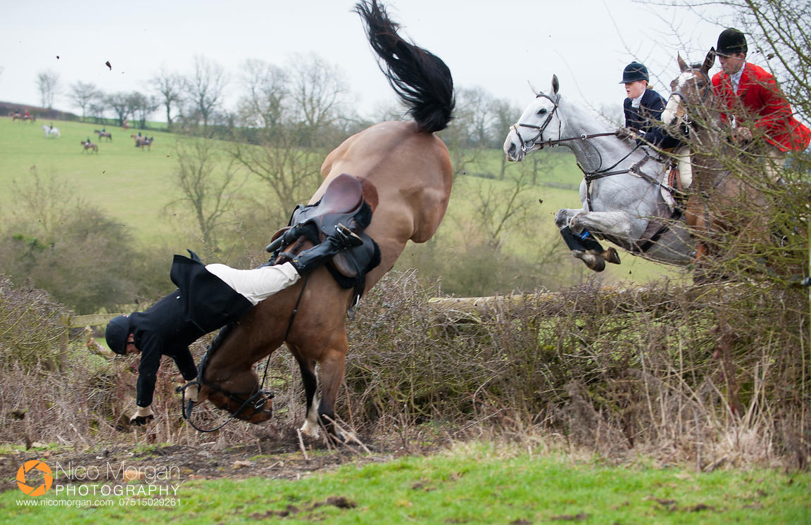 Philip Johnson's fall - The Cottesmore Hunt meet at Ladywood Lodge, Knossington, Rutland, Tuesday 28th February 2012.