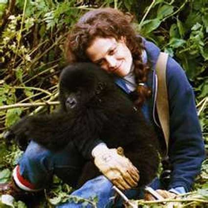 bush-meat-gorillas-in-the-mist-dian-fossey-sigourney-weaver-mountain