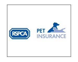 non-profit-insurance-rspca