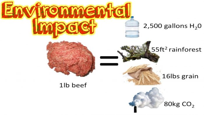 the-environmental-impact-of-diet