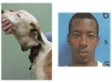 Monterion-Dionte-Davis-of-Forsyth-hacked-dog-hopes-head-off-to-kill-her