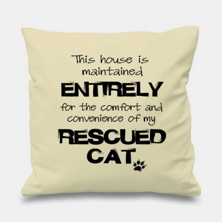 cream-cushion-MAINTAINED-FOR-RESCUED-CAT