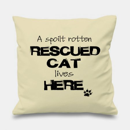 cream-cushion-SPOILT-RESCUE-CAT