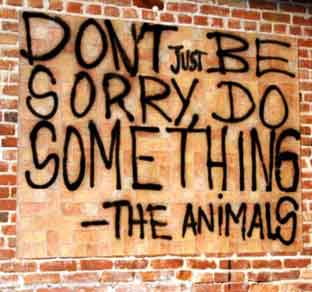 Stop-Animal-Cruelty-Dont-Be-Sorry-Do-Something