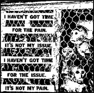 Stop-Animal-Cruelty-Its-not-my-issue