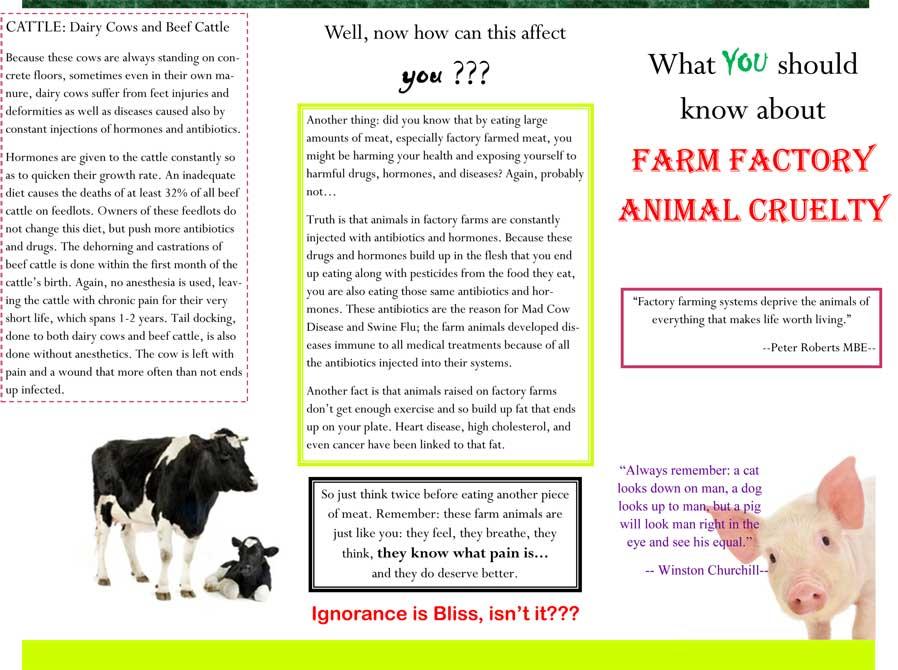 fact-sheet-brochure-1-michalAbraham