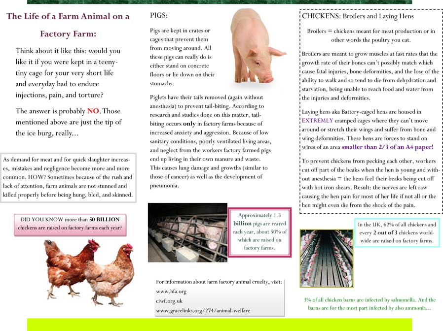 fact-sheet-brochure-2-2-michal-abrham