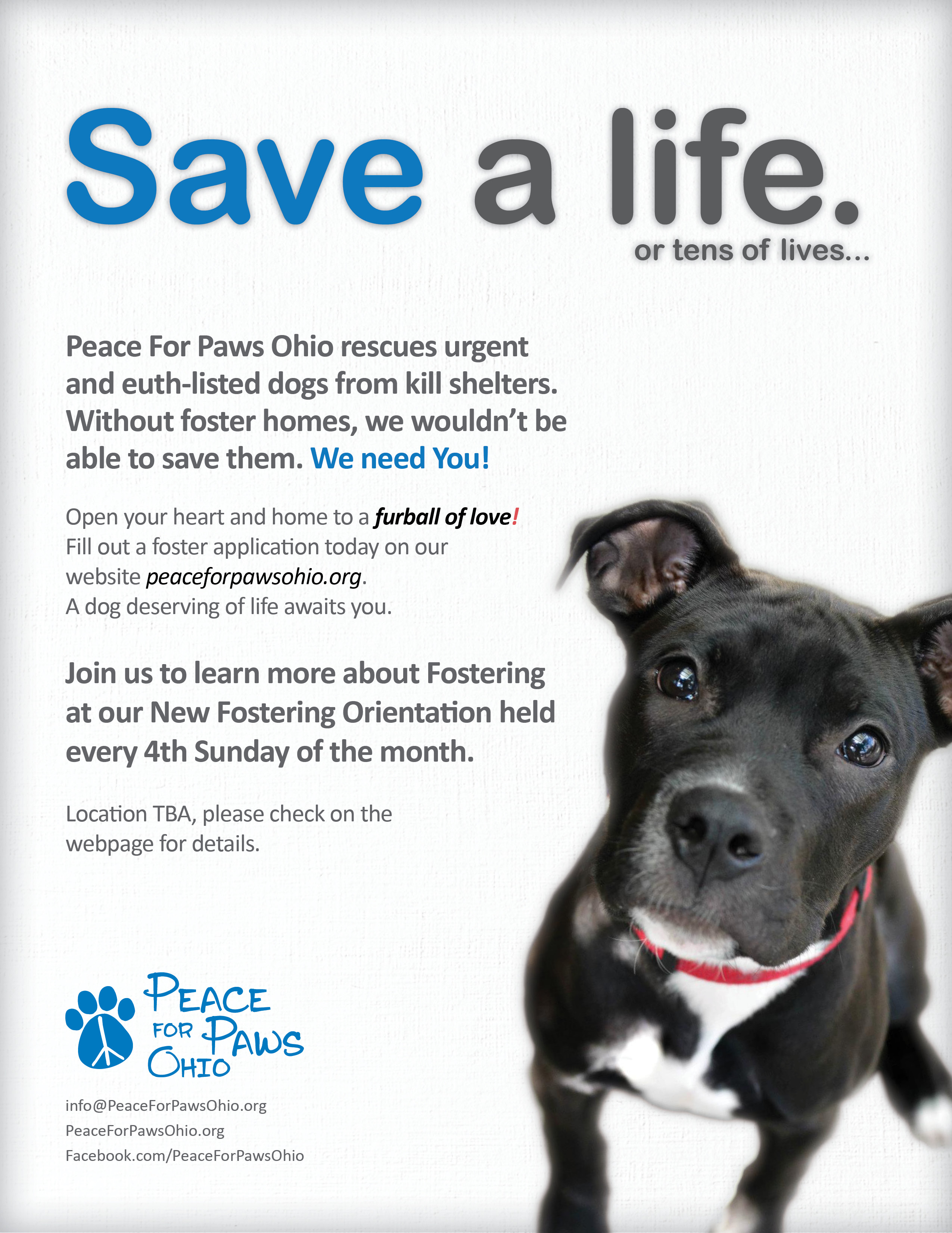 PFPO-Foster-FlyerPage1