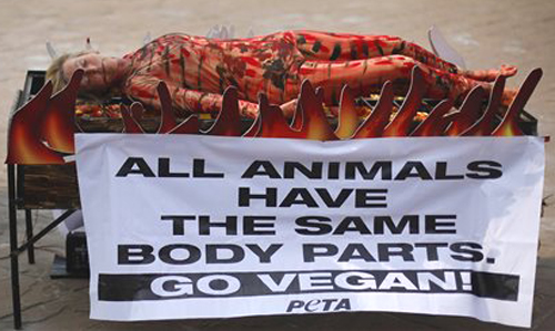 FILE - In this Nov. 6, 2013 file photo, animal rights activist and co-founder of People for the Ethical Treatment of Animals (PETA) Ingrid Newkirk lies on a mock barbecue stand as a sign of protest in Mumbai, celebrating World Vegan Month, a month long celebration of a health, environment- and animal-friendly vegan diet. PETA turns 35 years old in 2015, is the largest animal rights group in world with 3 million members, and has done a lot with a little sex, shock and celebrity.(AP Photo/Rafiq Maqbool, File)