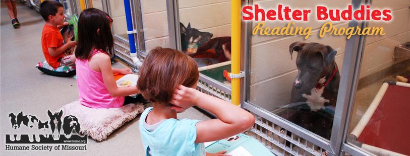 shelter-buddies-reading (1)