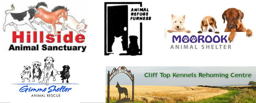 Different names for animal rescues
