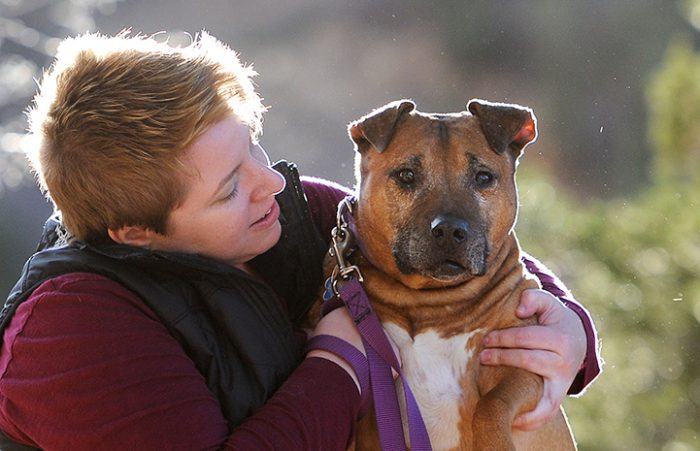 Vicktory-dog-Adoption-Oscar-1328