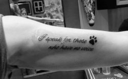animal rights tattoo