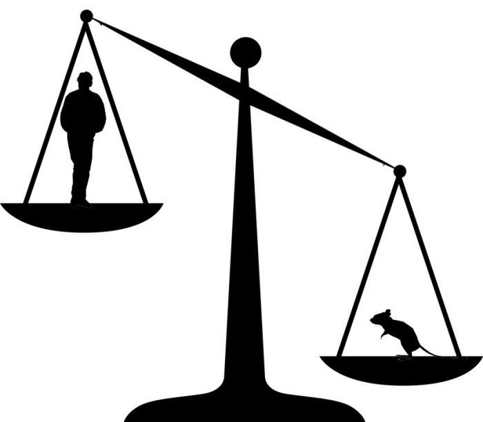 silhouette-mnkan-standing