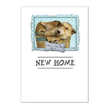 sfp-home-sweet-home-new-home