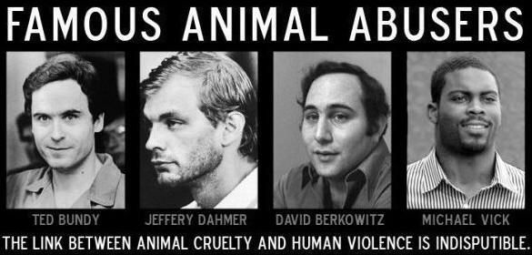 human-violence-and-aninal-cruelty-montage